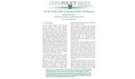 ceps-policy-brief_29