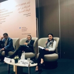 MENA- OECD_bab-2019